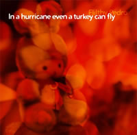 In a hurricane even a turkey can fly